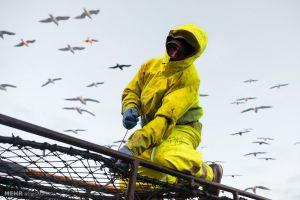 زندگی یک ماهیگیر در آلاسکا