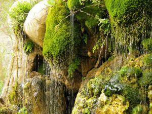 آشنایی با «آبشار تنگ دم اسب»