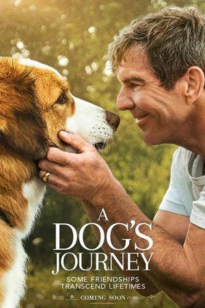 دانلود فیلم A Dog's Journey 2019 دوبله فارسی
