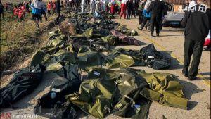 آواز علیرضا قربانی روی تصاویر سقوط هواپیمای اوکراینی