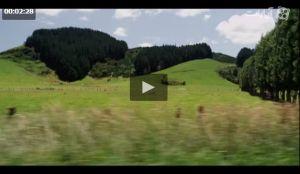 ویدیوئی بی نظیر از طبیعت (HD)