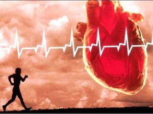 ورزش های مفید و مضر برای قلب را بشناسید